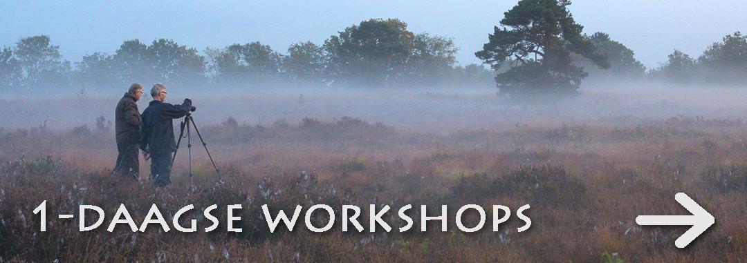 workshops JOWA-8385